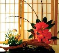 Decoratiune ikebana pentru living