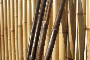 Tije din bambus