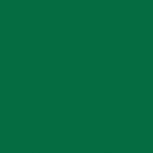 Covor PVC eterogen TARKETT pt spatii sportive OMNISPORT SPEED Forest green
