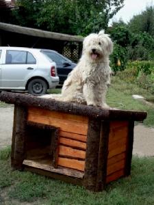 Mobilier pentru gradina -  Cusca pentru caine