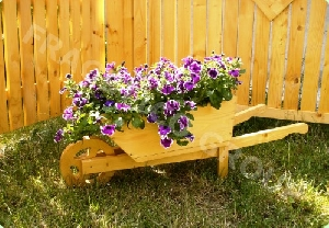 Jardiniera model 1