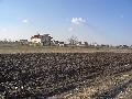 Berceni-Ilfov loturi de casa  500 mp