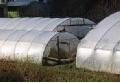 Agrofolie UV Stabil 8.5, neagră