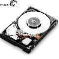 Hard Disk Seagate ST31000520AS  1 TB  Serial ATA 2