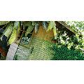 Plasa protectie Hobby 10 verde 1x50 m