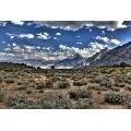 Parcul National Yosemite (45 x 30 cm)