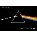 Pink Floyd - dark side of the moon (45 x 30 cm)