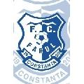 FC Farul Constanta (30 x 45 cm)