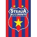 FC Steaua (30 x 45 cm)