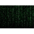 Matrix - display (61 x 41 cm)