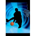 Basketball (41 x 61 cm)