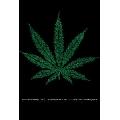 Marihuana - street terms (41 x 61 cm)