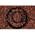 Boabe de Cafea (61 x 41 cm)