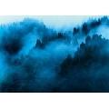 Padure in ceata (91 x 61 cm)