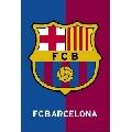 FC Barcelona (61 x 91 cm)