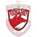 Dinamo (61 x 91 cm)