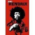 Jimi Hendrix (61 x 91 cm)