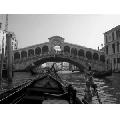 Tablou Pod in Venetia