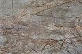 Marmura Rainforest Maro lustruit lastre 2cm
