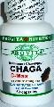 CHAGA Ciaga C Max ciuperca concentrata 60 capsule