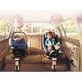 Baza auto FamilyFix + Cos auto Pebble - BCT63005+BCT63300080 BCT63005+BCT63300080
