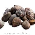 Pebbles Brown Polished Sac 20kg