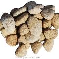 Pebbles Sandstone Mandras 2-4 cm Sac 20 kg