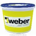 Tencuiala decorativa acrilica - Grupa 1 - Weber.Pas Classic