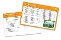 Carduri pentru intelegerea lecturii- set 4 - EDULSP 5503-UK