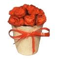 Mini-buchet de trandafiri rosii