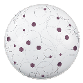 Plafoniera Jolly Lilac E27 2x MAX 60W