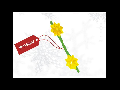 INSTALATIE DE POM TIP MARGARETE CU PROGRAMATOR (220V)