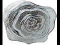 Lampa de veghe cu led, 4 x 0.1W, rosu,  TG-3111.014011