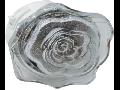 Lampa de veghe cu led, 4 x 0.1W, galben,  TG-3111.014012