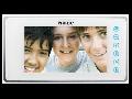 Post interior video interfon, alb,