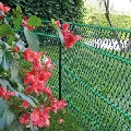 Plasa protectie pentru plante Tenax Floret Verde 0.4 x 25m
