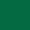Covor PVC eterogen TARKETT pt spatii sportive OMNISPORT REFERENCE Forest Green