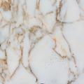 Marmura Arabescato Oro Polisata 60 x 30 x 2 cm (Translucida)