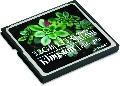Kingston - Card CF Elite Pro 133X, 32GB