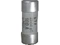 CH CH22x58 gG 100A/500V
