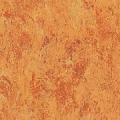 Linoleum Natural Tarkett 2.50mm Veneto Amber 636