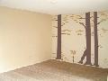 Pictura decorativa pe pereti