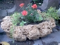 jardiniera piatra naturala